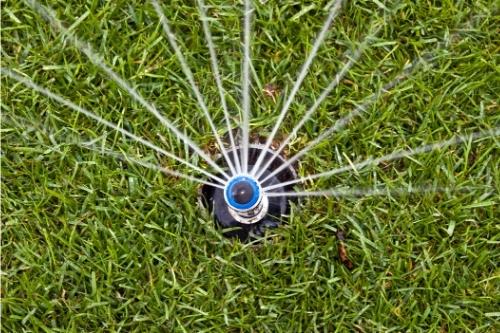 Видове пръслаклки за полижане на райграс, трева, цветя, насаждения.